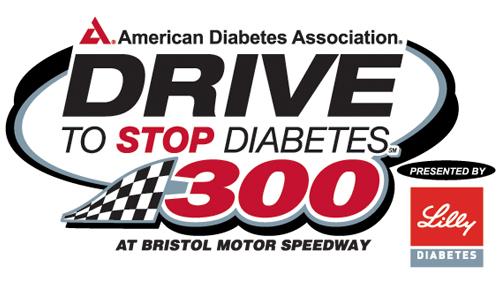 d2sd300 logo